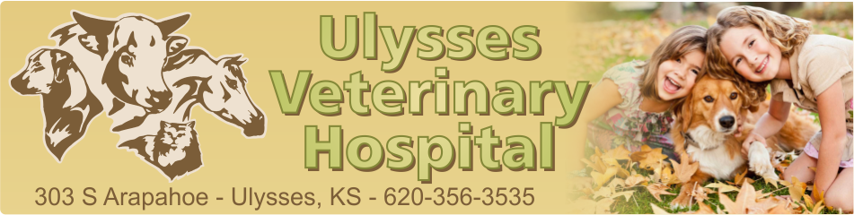Ulysses Veterinary Hospital